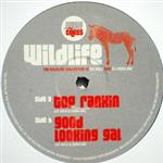 Deekline & Ed Solo (Wildlife Collective)- 13431