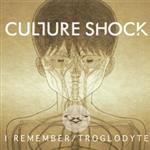 Culture Shock- 15515