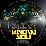 Excision- 21694