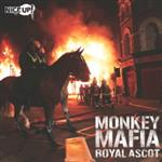Monkey Mafia- 24671